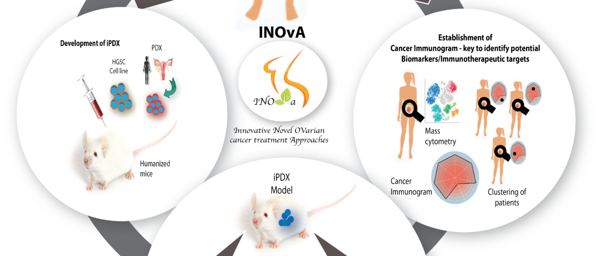 Permalink to: About INOvA